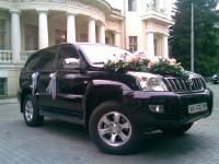 Свадбы,торжества,делегации Харьков