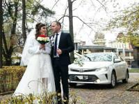 """Toyota Camry """"55""""; LC PRADO"""