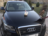 оренда AUDI Q5, оренда авто з водієм, весільне авто