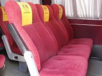 Пассажирские перевозки Кременчуг
