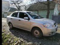 Аренда авто Шевролет Авео с водителем Полтава