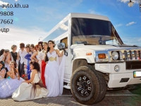 Аренда лимузинов на свадьбу